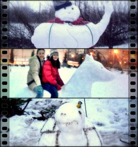 The SuperSnowman, the Snow Dog and the Turtle Got Ready to Jump