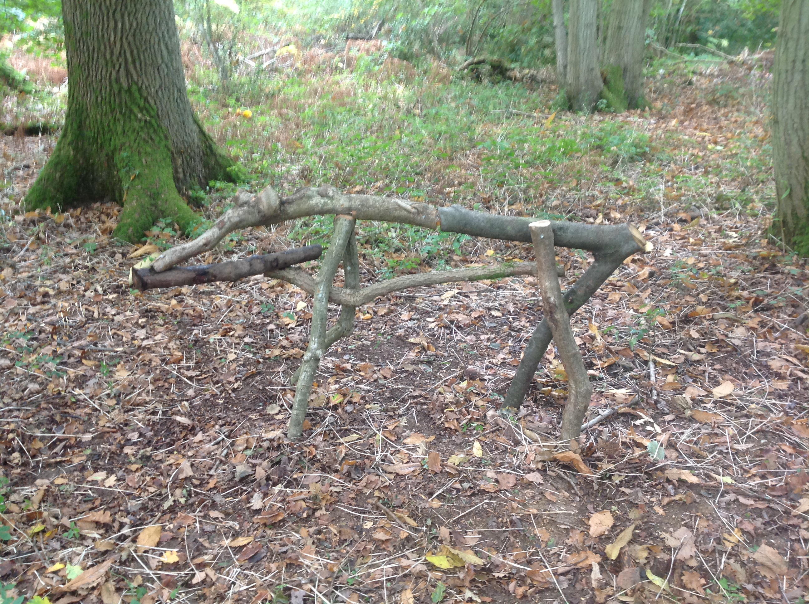 Picture of The Armature...