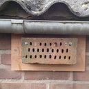 Build a brick bee hotel.