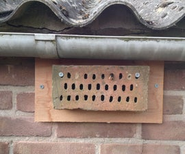 Build a brick bee hotel.