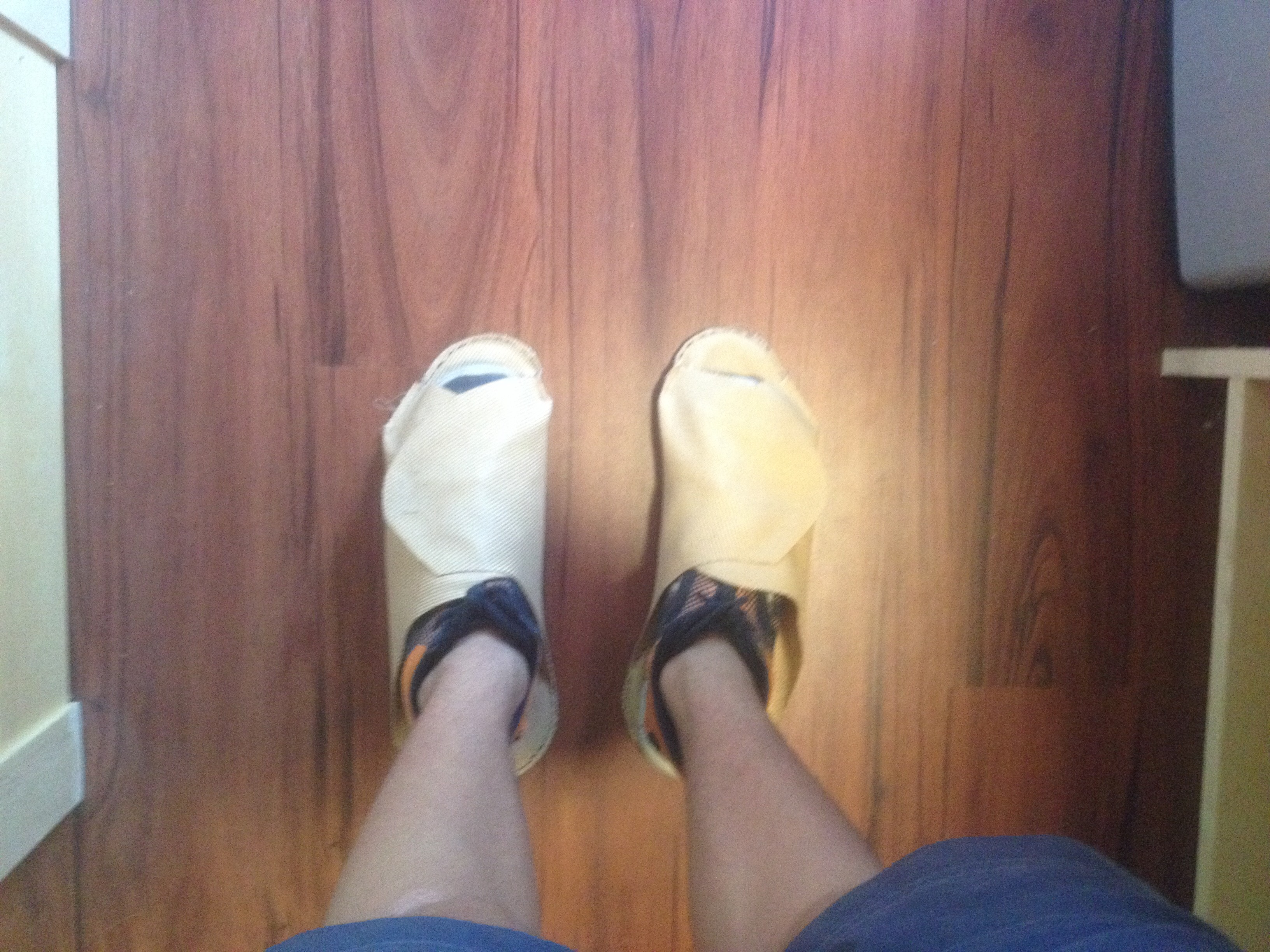 Picture of Wearing the ShoeSock