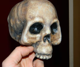 Transform Cheap Dollar Store Plastic Skulls Into High Quality, Realistic Looking Halloween Props