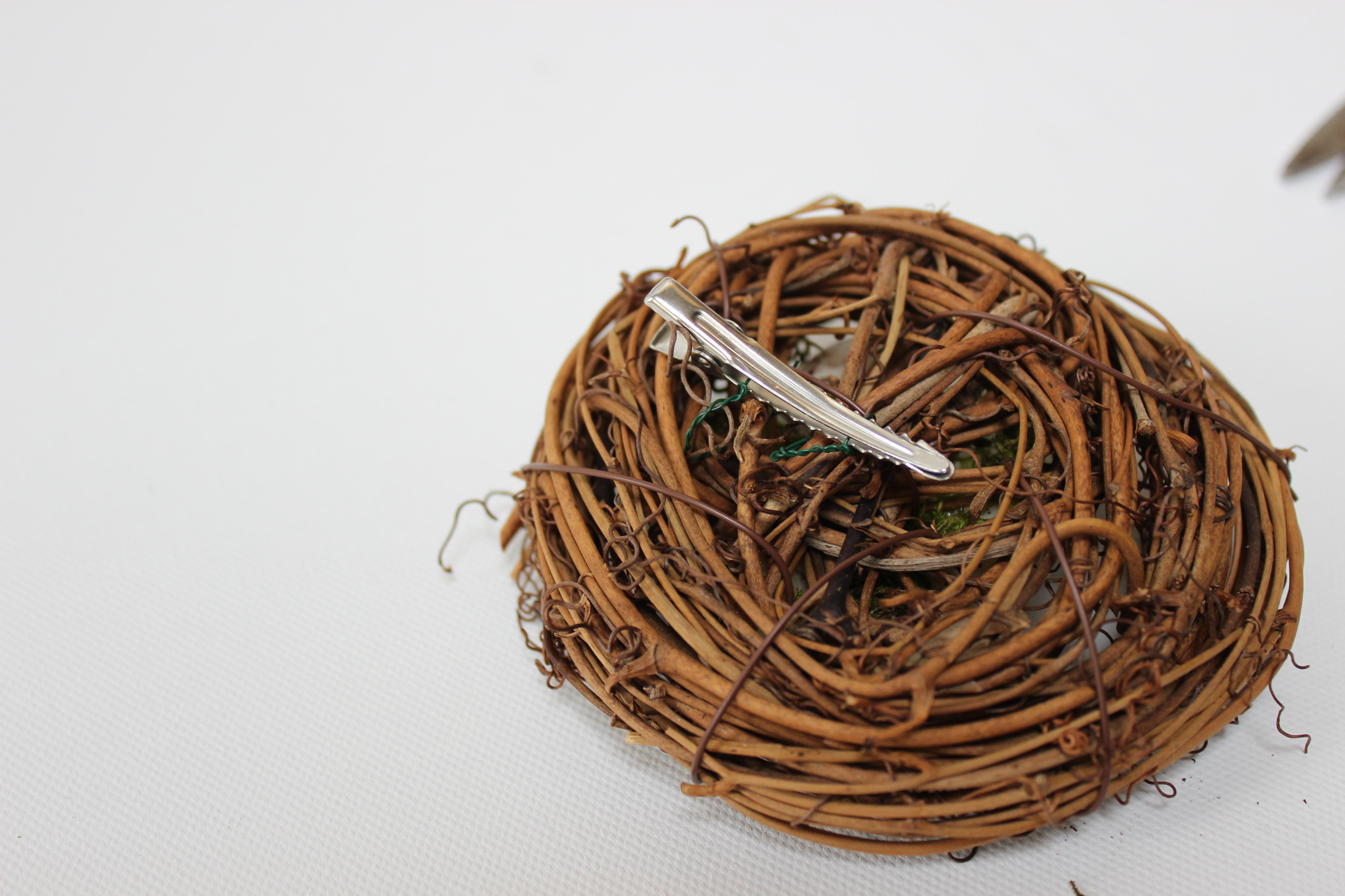 Picture of Birds Nest Clip