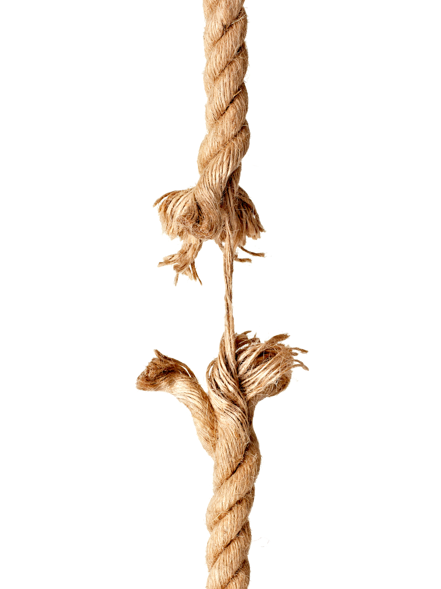 Picture of The Rope Concept