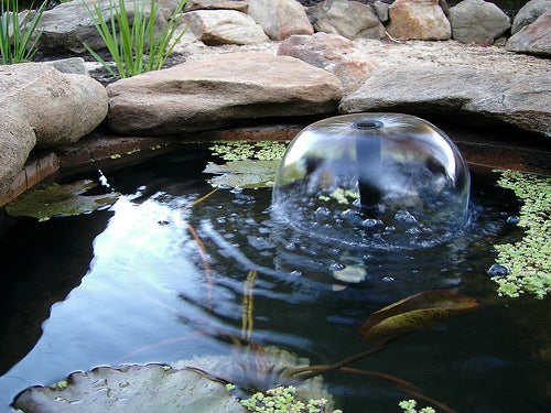 How to Build a Fish Pond or Garden Pond: 6 Steps (with ...