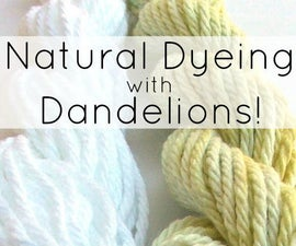 Natural Dyeing With Dandelions!
