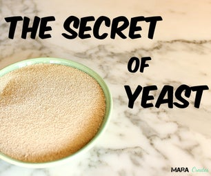 Secret of Yeast