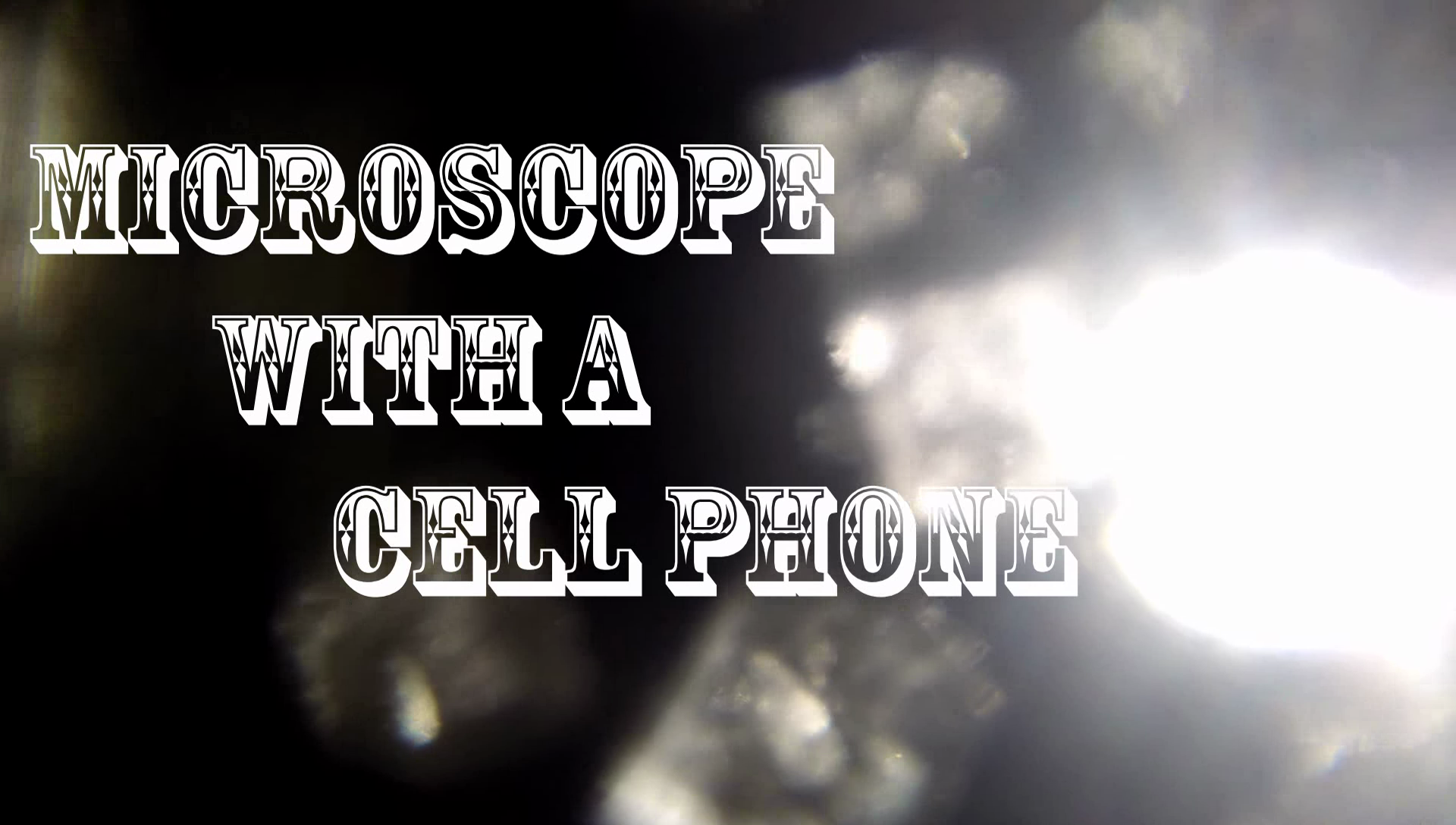 Picture of I Made a Microscope With My Cell Phone!