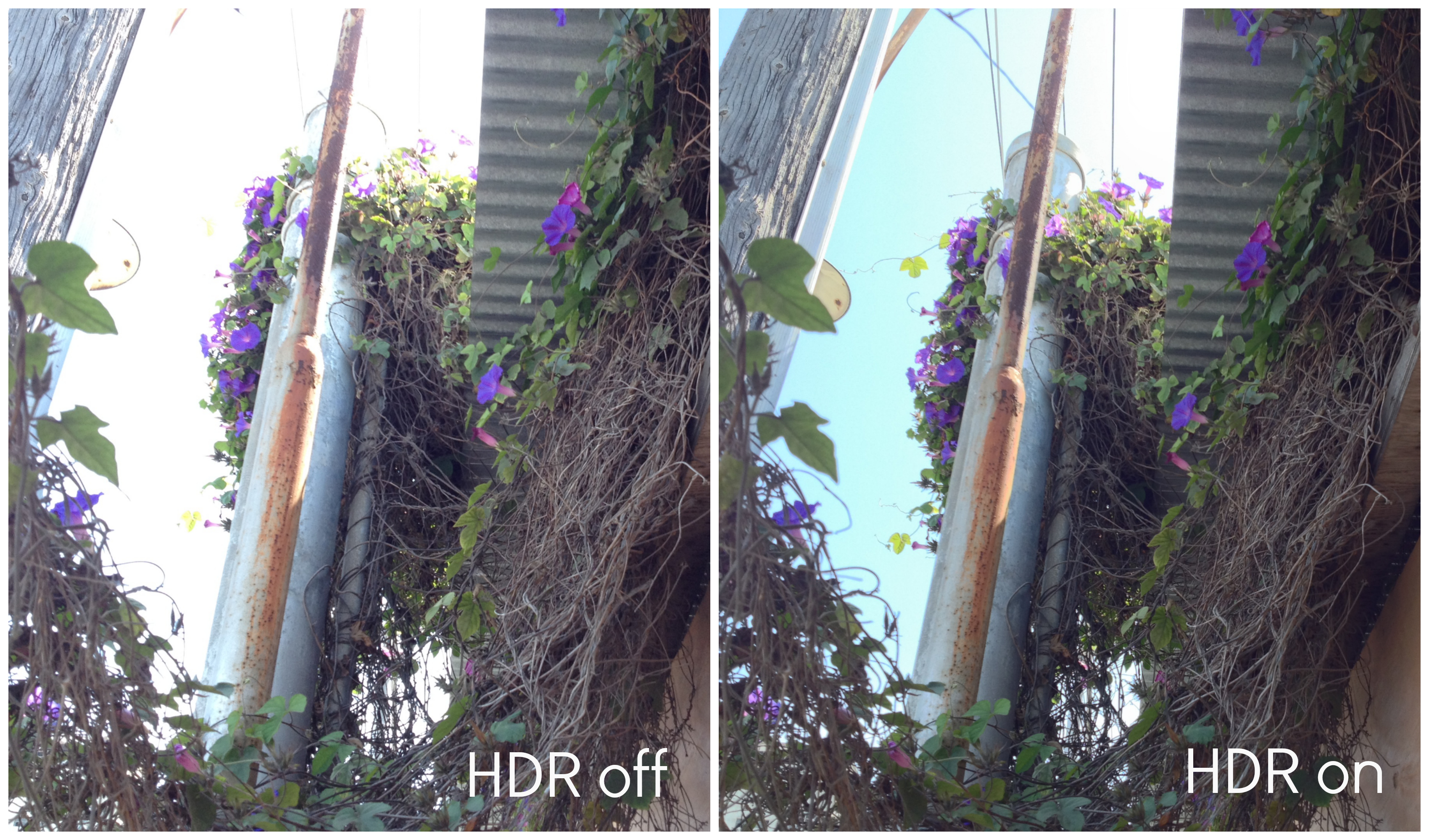 Picture of Learn About HDR and Use It!