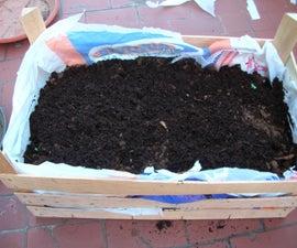 30 minute seedbed