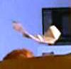 Picture of Indoor Flight