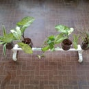 Make a Planter With Self Watering Stand