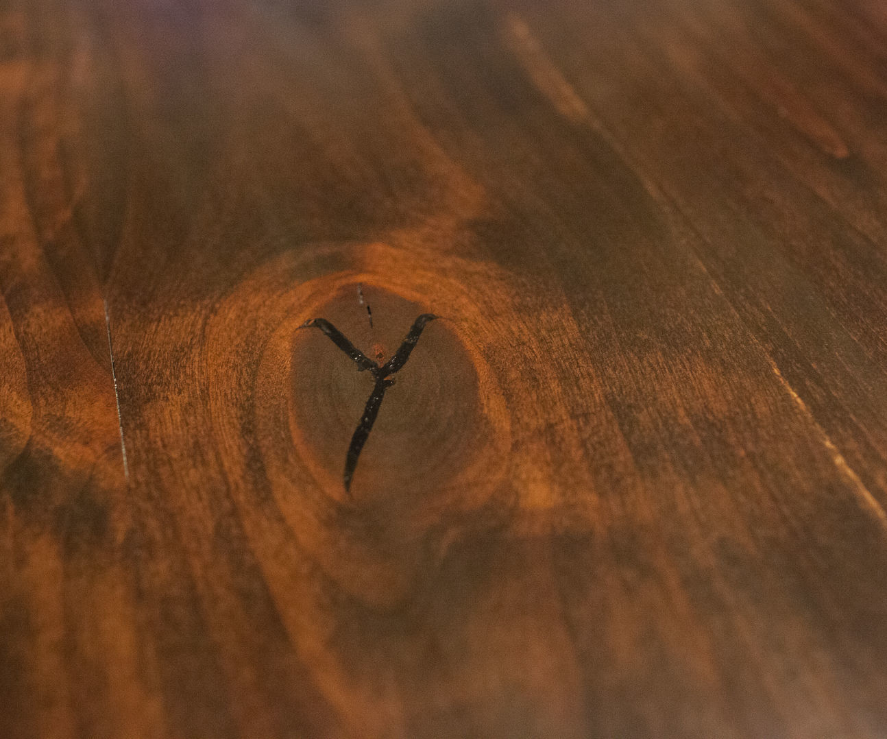 Using Epoxy And Dye To Fill Knots And Cracks In Wood 3
