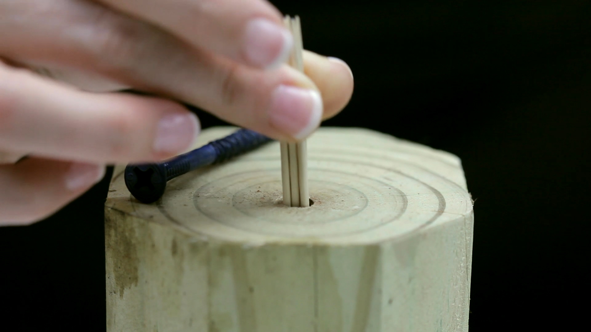 Picture of Toothpick Screw Holder