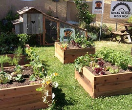 Getting Started with Gardening Using Raised Beds