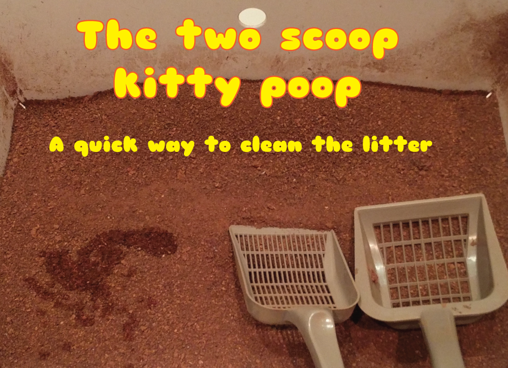 Picture of 2 Scoop Kitty Poop Method - a Really Fast Way to Clean the Kitty Litter