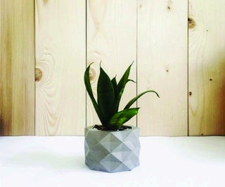 GEO ONE - 3D PRINTED MOLD for CONCRETE PLANTER !