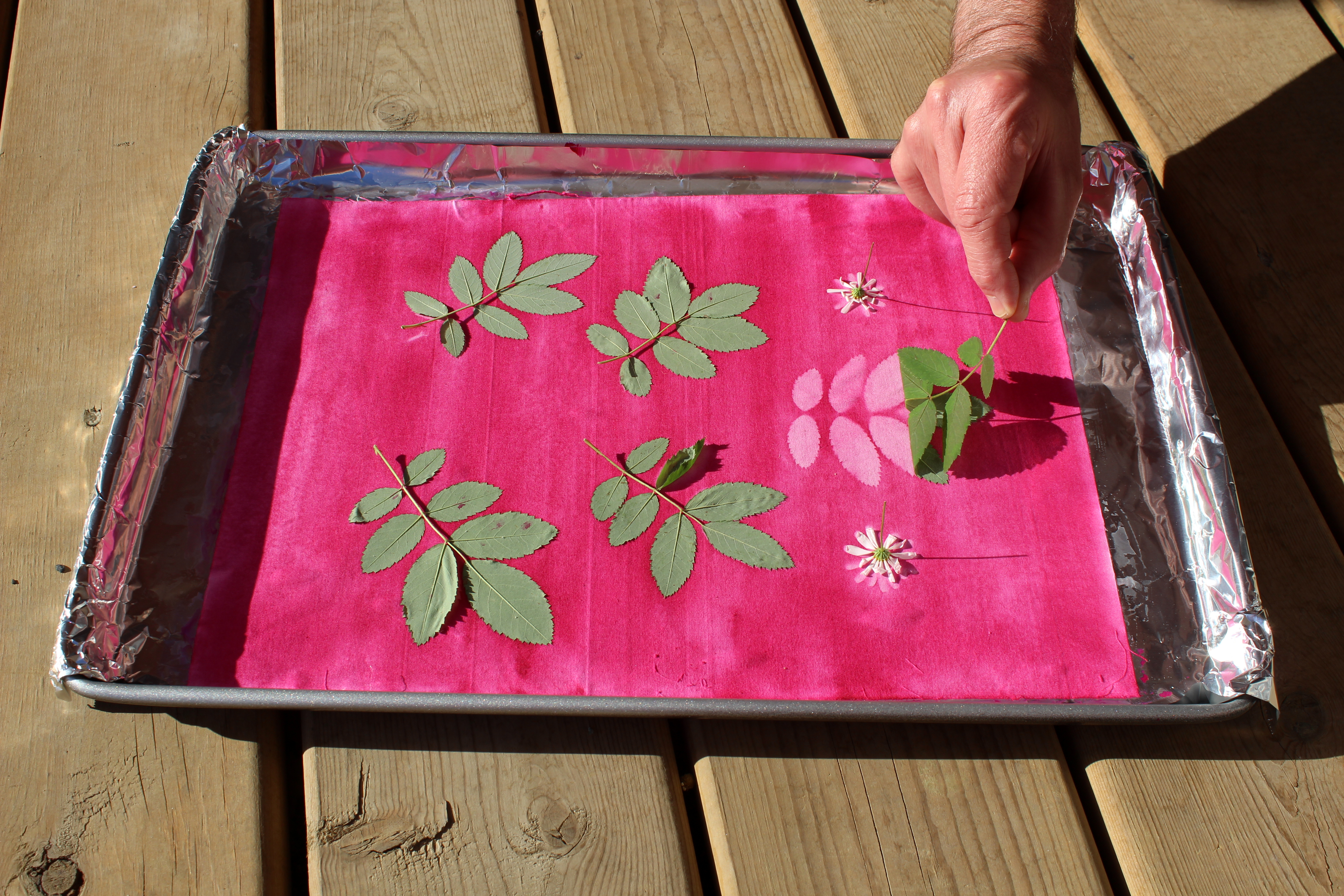 Picture of Once Fabric Is Dry, Remove Leaves and Flowers