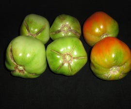 Awesome Fried Green Tomatoes