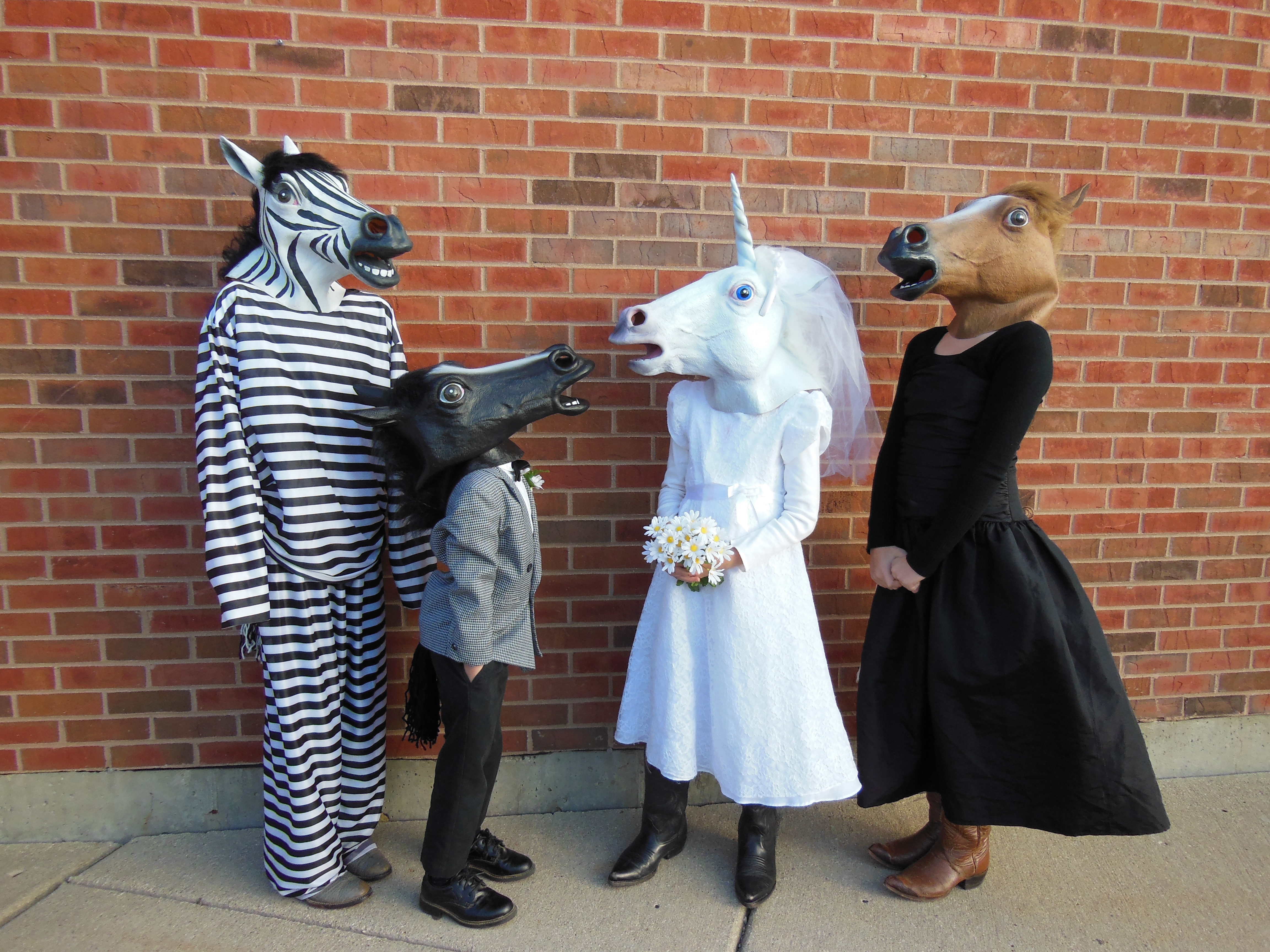 Picture of The Equine Wedding Party