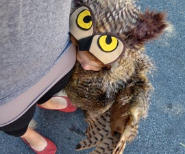 Make an Owl Costume