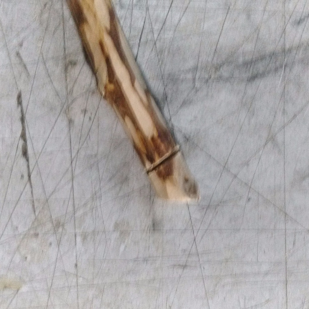 Picture of A Bit of Legwork