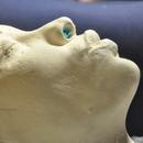 Alginate mold - face