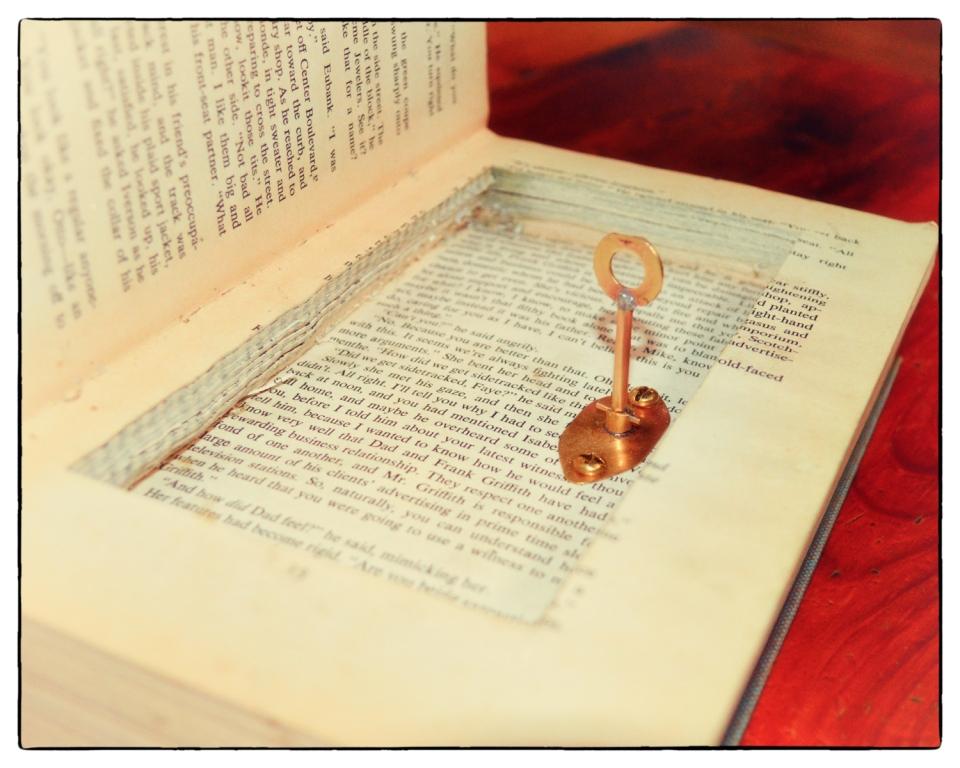 Picture of Super Secret Book Safe