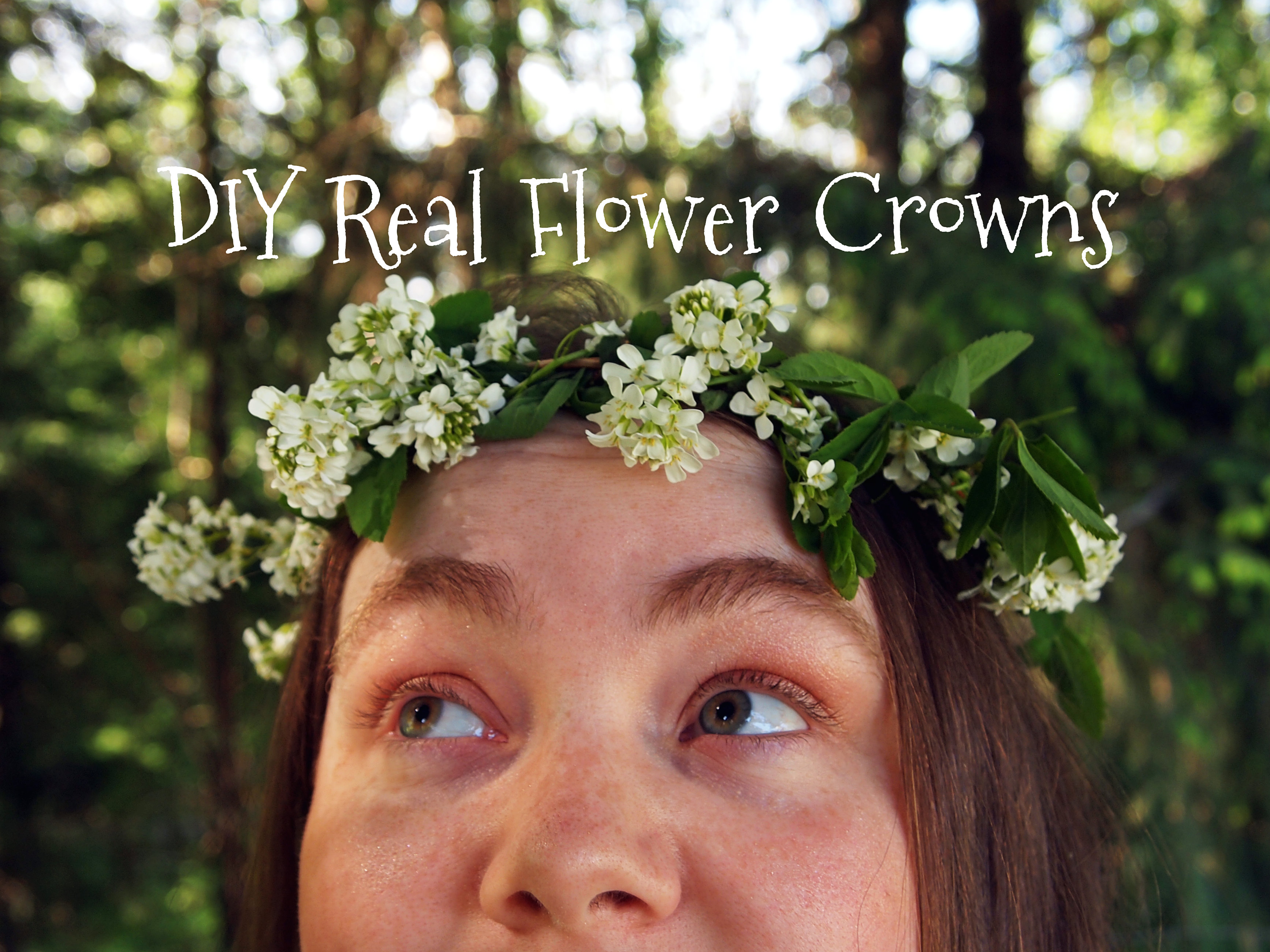 Diy real flower crowns 5 steps with pictures picture of diy real flower crowns izmirmasajfo