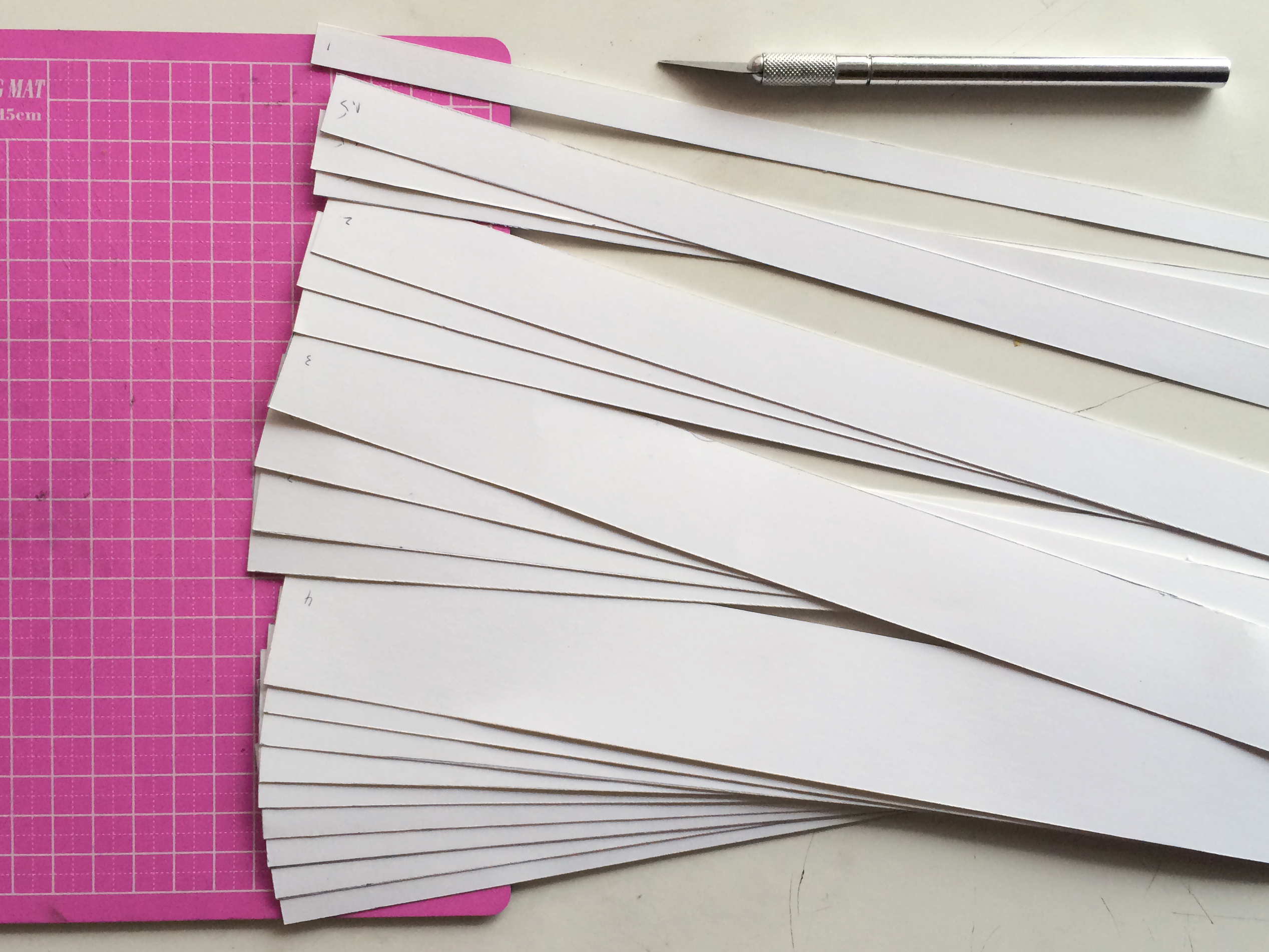 Picture of Cut Paper Strips for the Horns