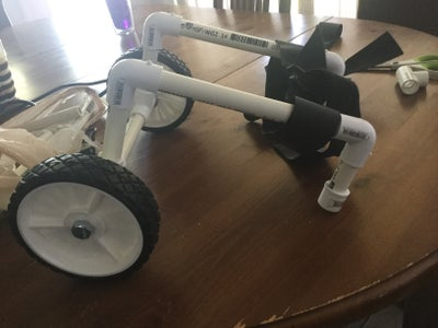 Mini Walker for Your Dog