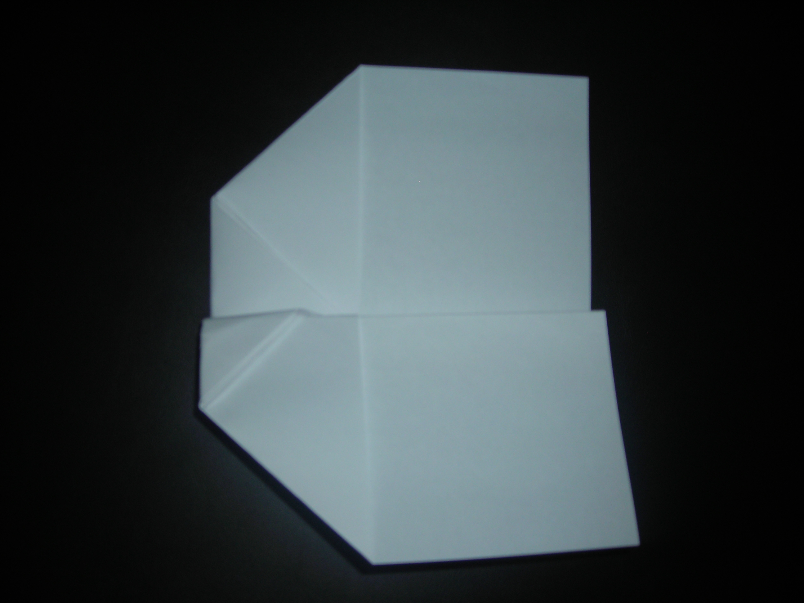 Picture of Folding the Wings