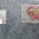 Small-Range Motion Detector