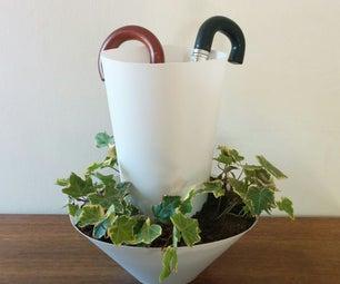 Umbrella Watered Plant