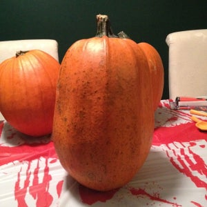 Picking Your Gourd…..