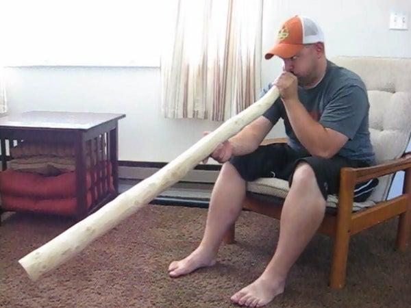 Turn a Used Christmas Tree Into a Didgeridoo