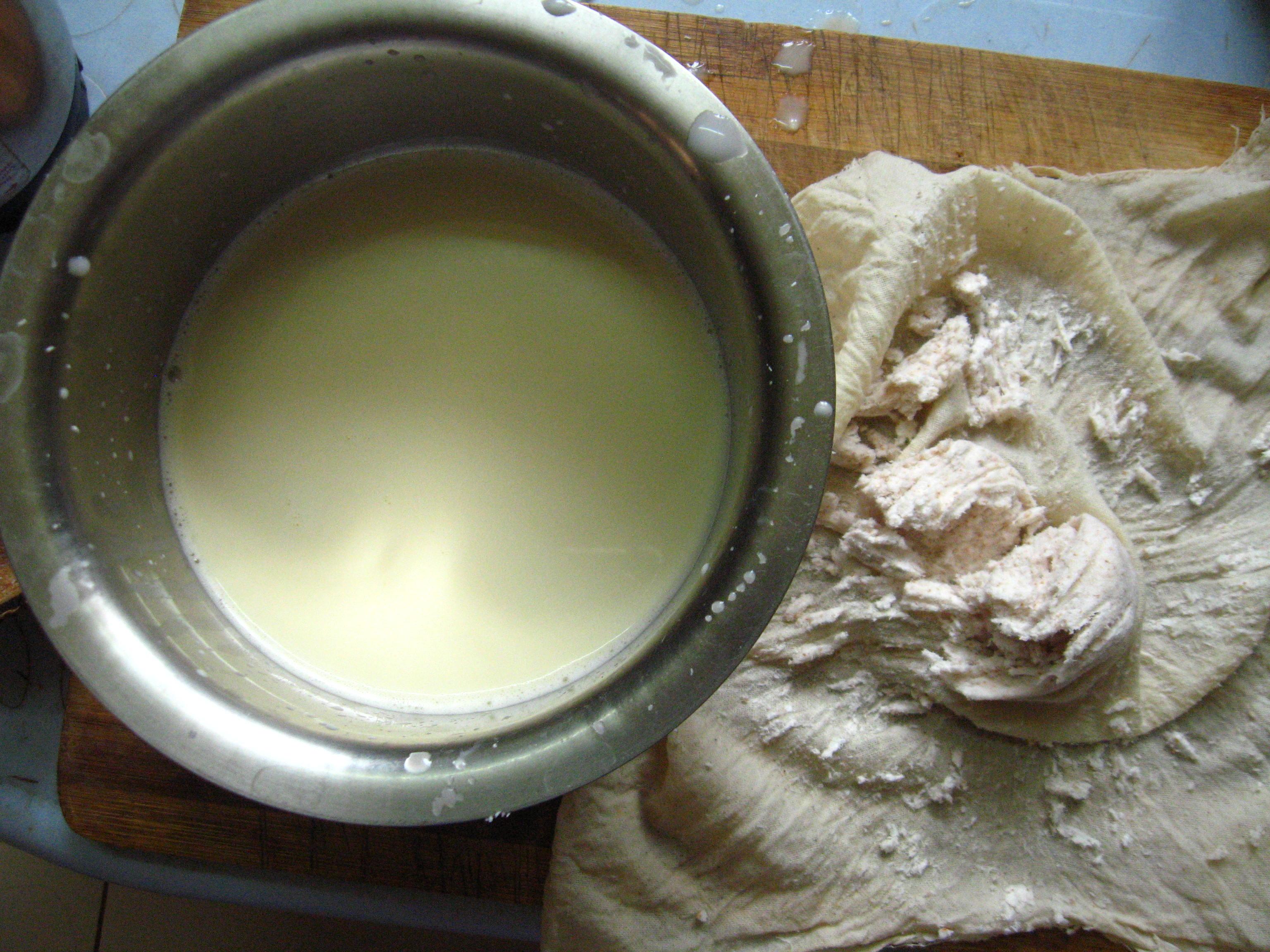 Picture of Make Coconut Milk