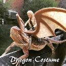 Easy Dragon Costume for Your Beardie!
