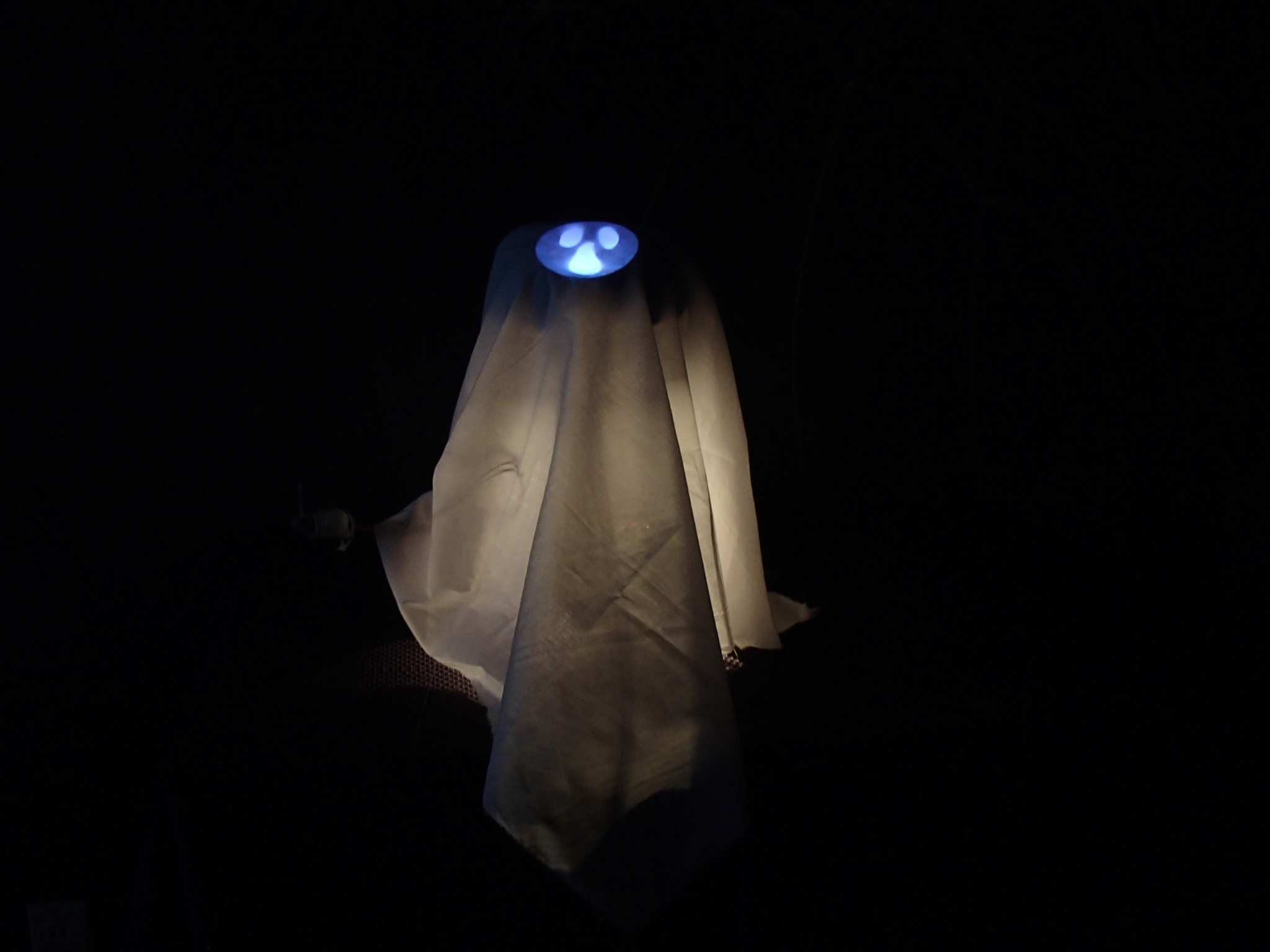Picture of Halloween Hack: Ghost Clyde