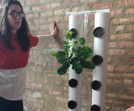 Aquaponics - Minimal Apartment Size