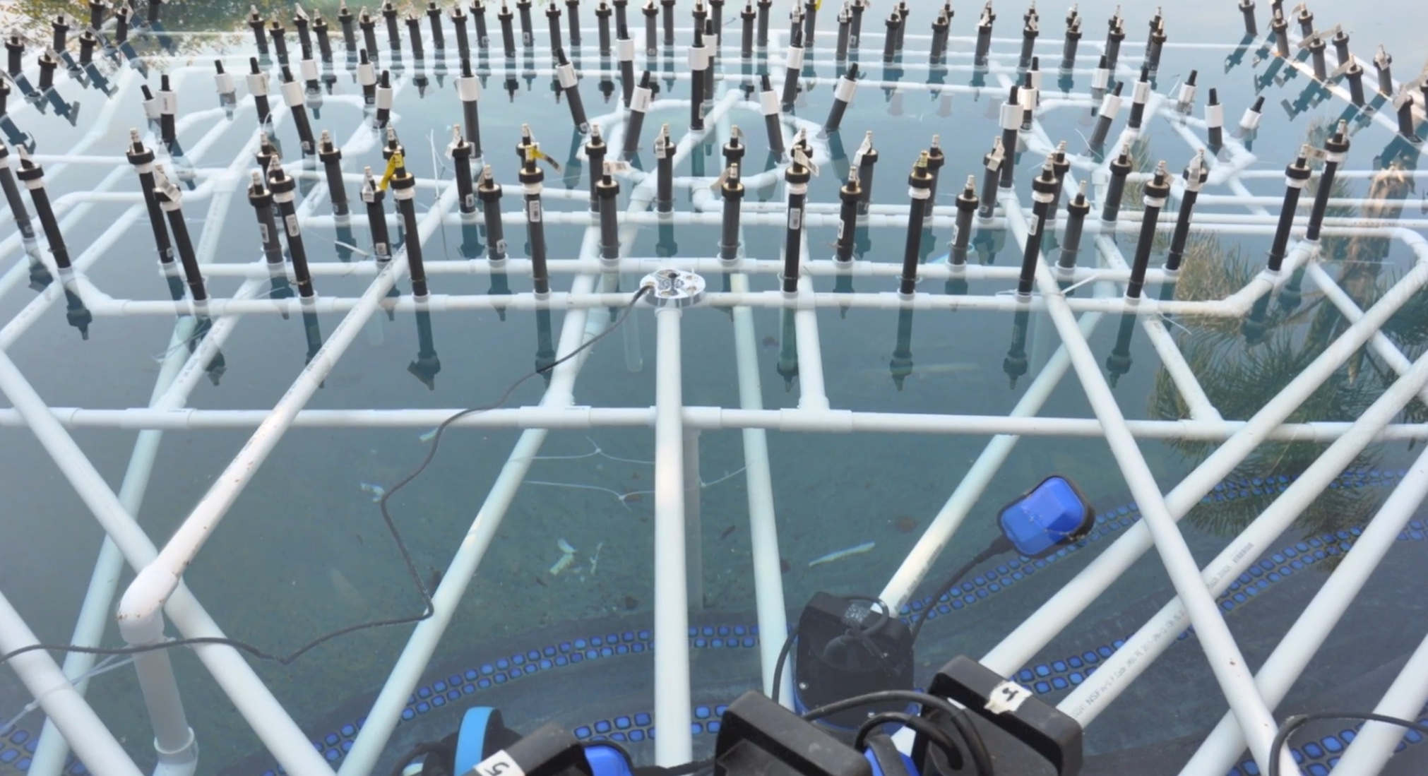Picture of Placing the System in the Pool