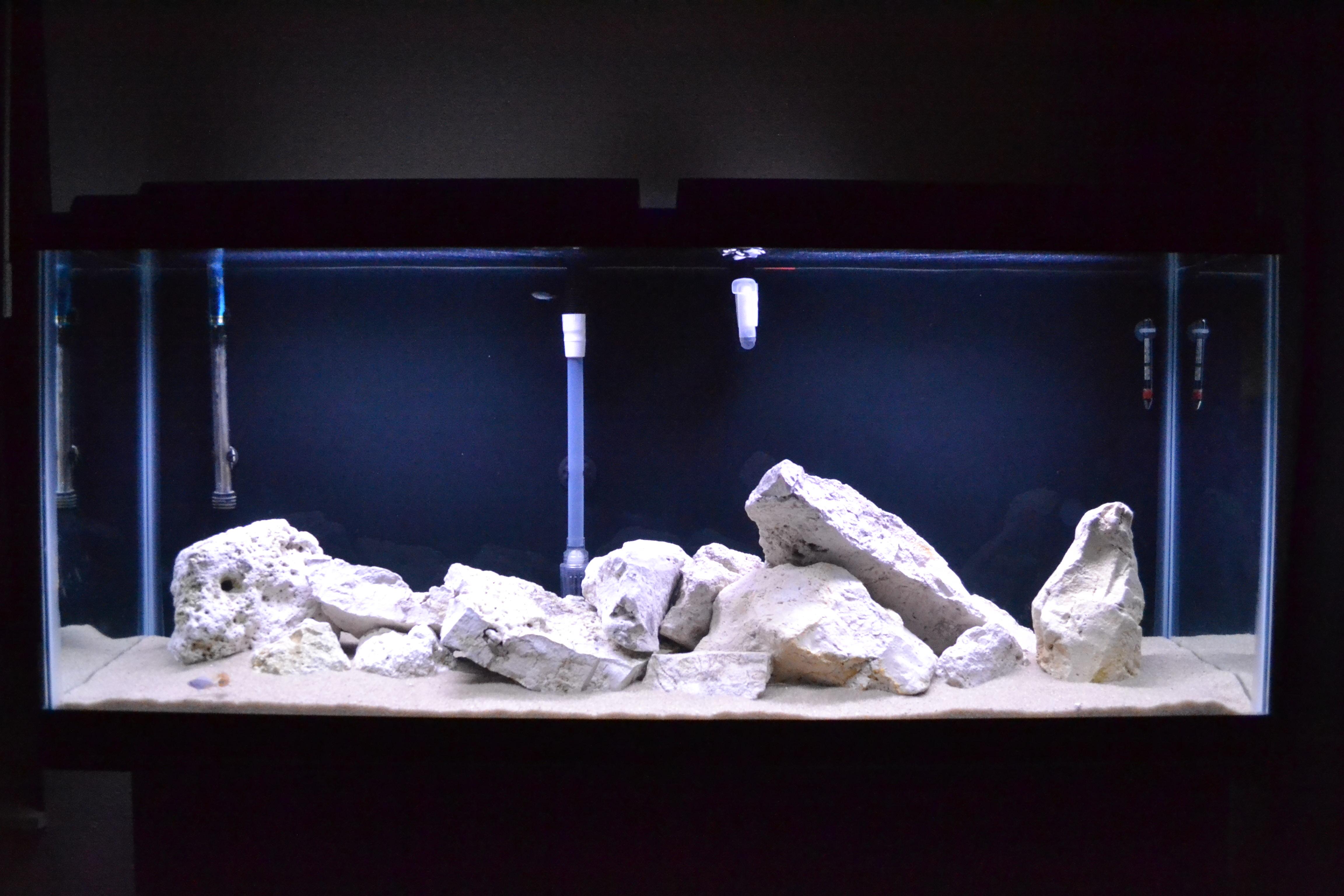 Picture of  Aquarium Guide