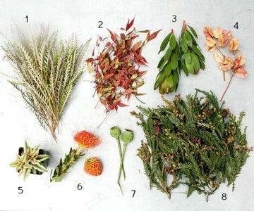 Modern Ingredients