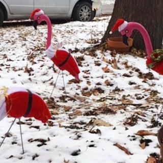 Flamingo Santa