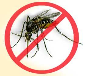 Picture of Dengue Mosquito Repellent - Repelente Para Mosquito Da Dengue