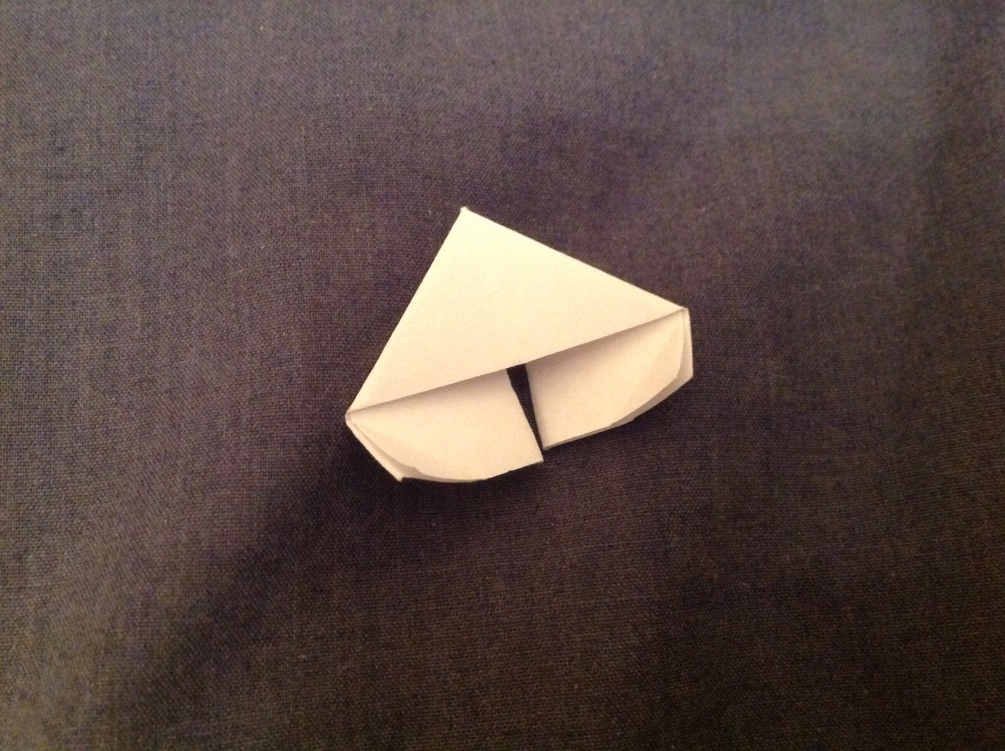 Picture of Fold the Module