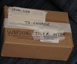 How to ship a tiger to Canada