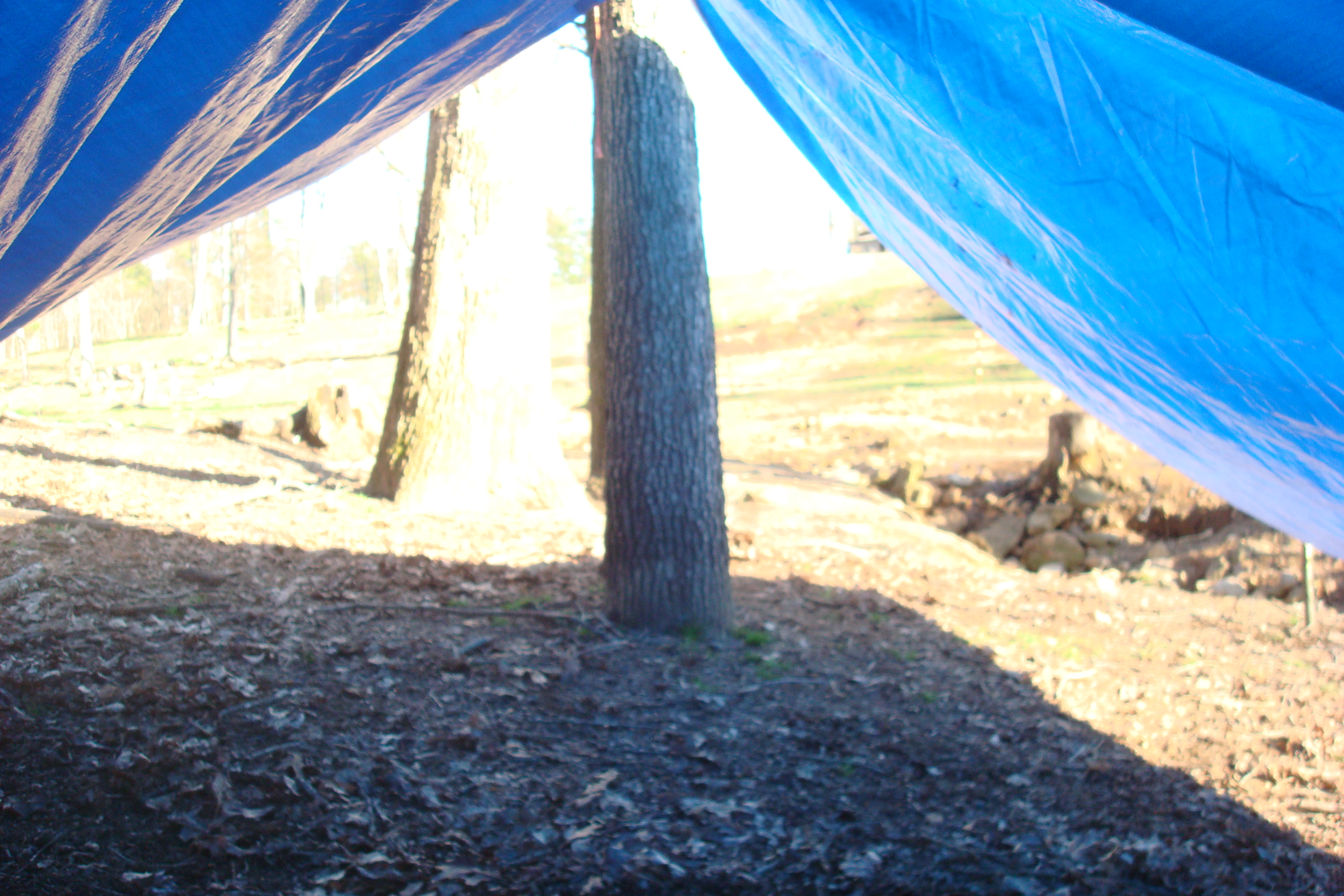 Picture of Paracord Tent Or, Hobos Tent