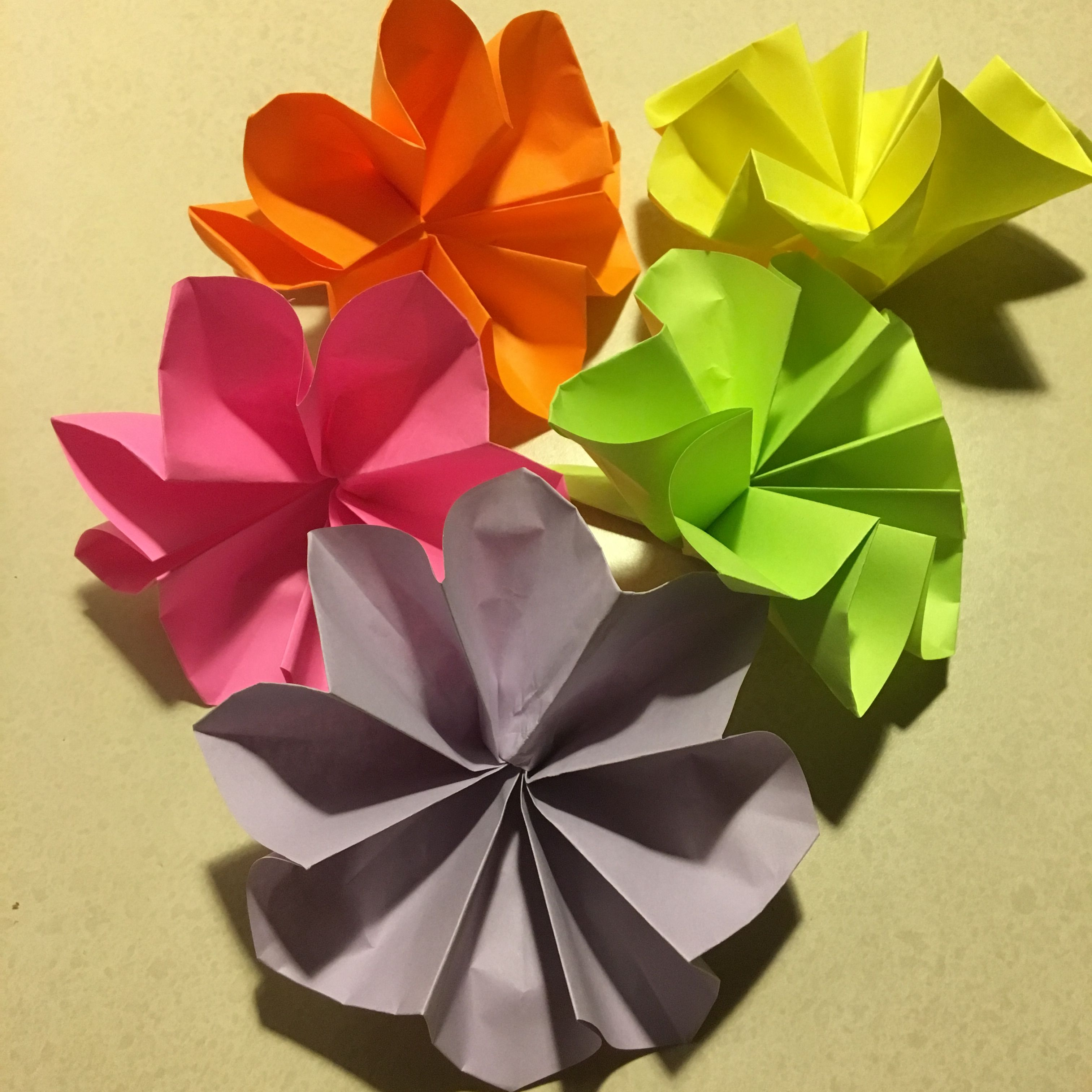 Picture of How to Make an Origami Buttonhole Flower