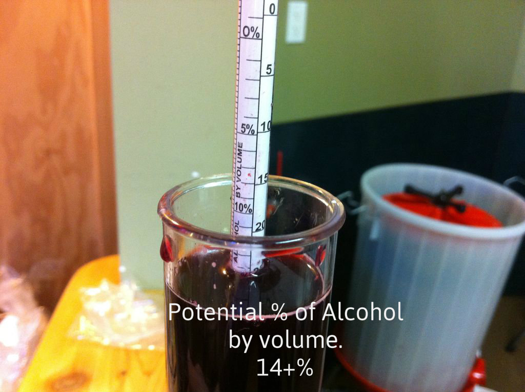 Picture of Check Specific Gravity (S.G.)